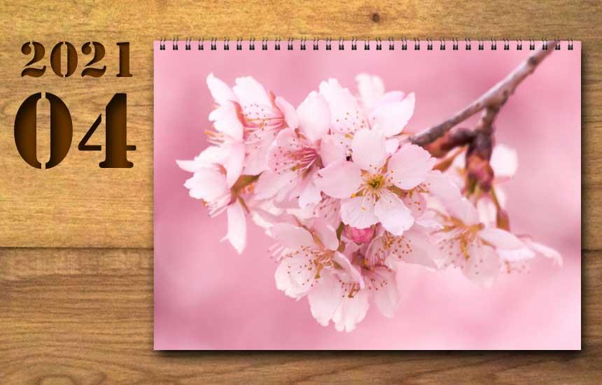 2021年4月の運勢カレンダー(星座占い・宿曜・六曜)